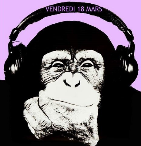 Chimp Headphones.jpg