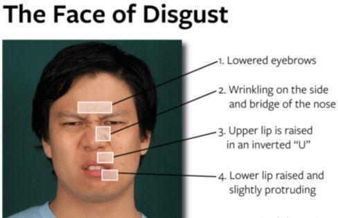 face-of-disgust.jpg