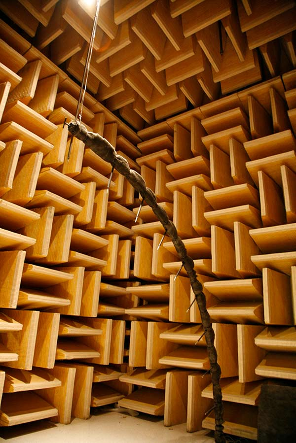 Harman Microphone Array Anechoic Chamber.jpg