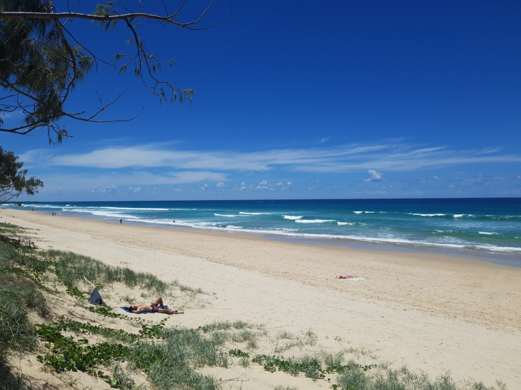 main beach north (Medium).jpg