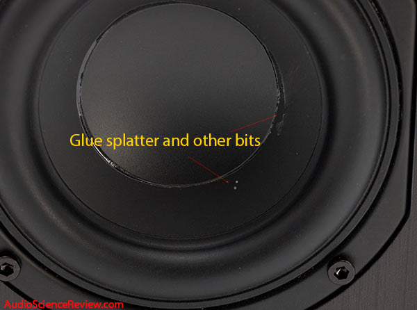Micca RB42 Bookshelf Budget Speaker Woofer blemishes Review.jpg