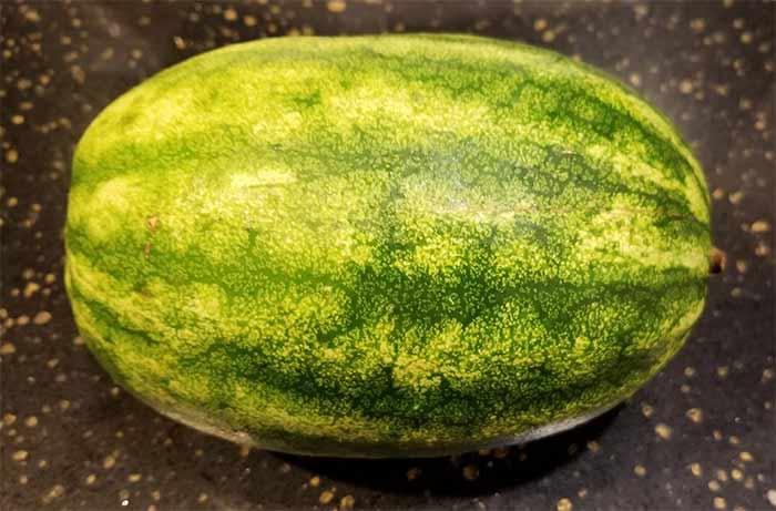 Mini watermelon.jpg