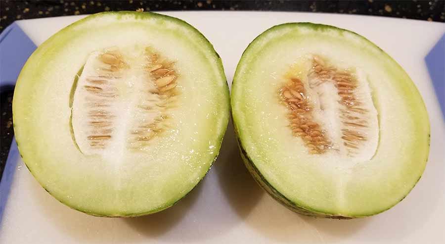 Musk Melon.jpg