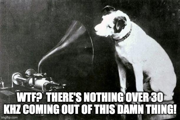 RCA Dog.jpg