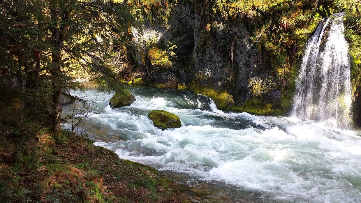 salmon creek.jpg