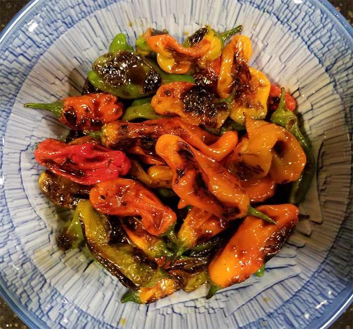 Shishito peppers.jpg