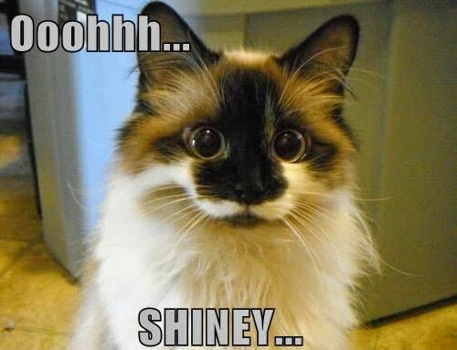 Show-me-the-shiny.jpg