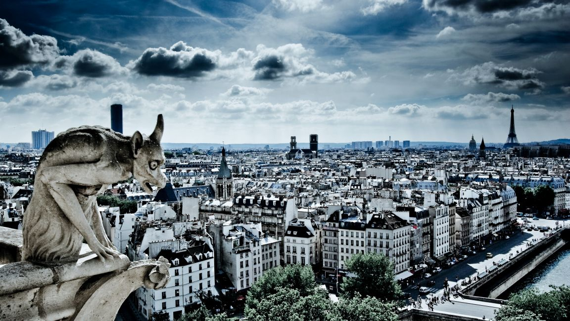 Wilding - Paris  from Notre Dame.jpg